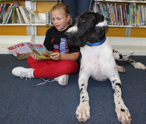 Read With Doc the Dog