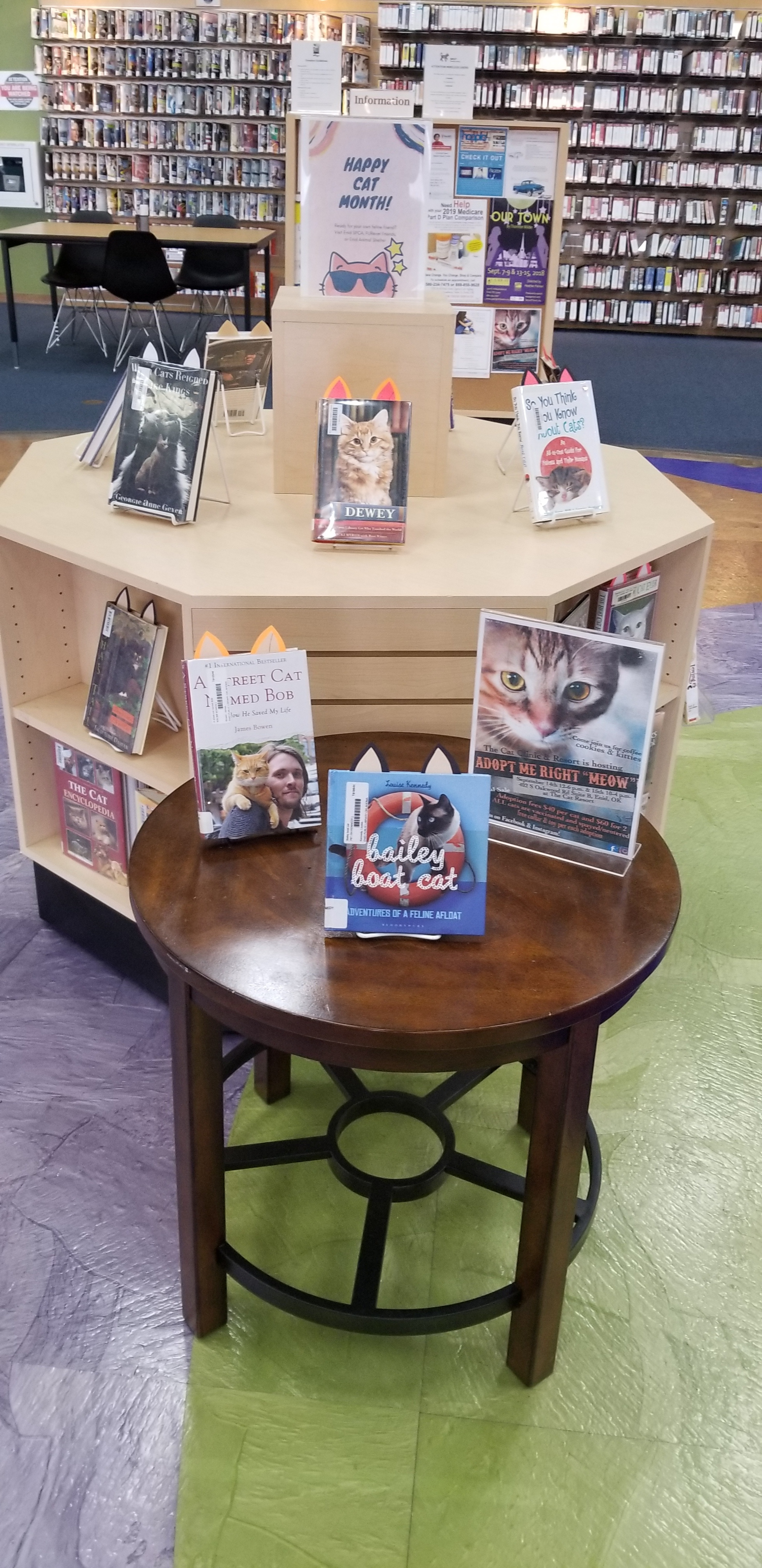 Happy Cat Month Book Display