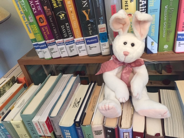 bunny sitting on stack of books
